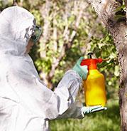 aerosols pour les collectivités